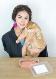 Belles femmes avec des chats et des aliments pour chats Image stock
