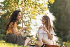 Belles femmes buvant du vin en parc Images libres de droits