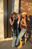 Belles femmes de mode Photos libres de droits
