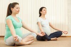 Belles femmes enceintes faisant le yoga Photographie stock libre de droits