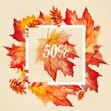 Belles feuilles d'automne colorées de collection pour la copie Photo stock