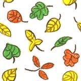 Belles feuilles d'automne colorées de collection sur le fond blanc illustration libre de droits