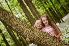 Belles filles dans la forêt blanche de robe au printemps Photos libres de droits
