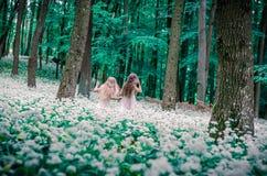 Belles filles dans la forêt blanche de robe au printemps Images libres de droits