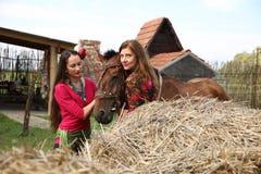belles filles gitanes dans des vêtements lumineux avec un cheval à une ferme photo libre de droits