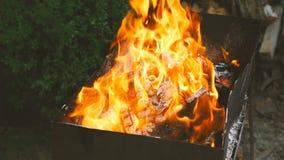 Belles flammes de barbecue Plan rapproché de mouvement lent clips vidéos