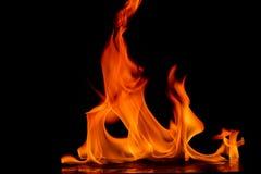 Belles flammes du feu Photo stock