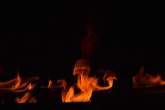 Belles flammes du feu sur le fond noir Images libres de droits