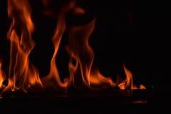 Belles flammes du feu sur le fond noir Photos stock