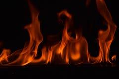 Belles flammes du feu sur le fond noir Photographie stock libre de droits