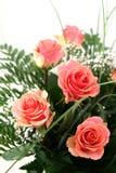 Belles fleurs Photographie stock