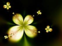 Belles fleurs Photographie stock libre de droits