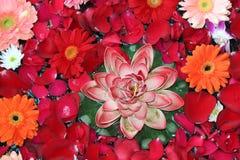 Belles fleurs abstraites pour l'occasion Images stock