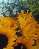 Belles fleurs attendant un mariage photographie stock libre de droits