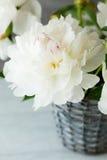 Belles fleurs blanches dans un vase photographie stock libre de droits
