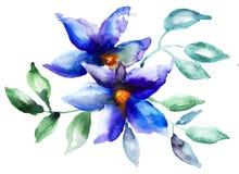 Belles fleurs bleues Image stock