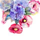 Belles fleurs d'été Photo libre de droits