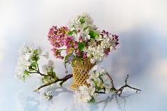 Belles fleurs de Burevestnik dans le panier photos libres de droits