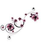 Belles fleurs de cerise illustration de vecteur
