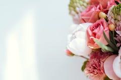 Belles fleurs de floraison photos libres de droits
