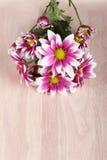 Belles fleurs de maman sur le fond en bois Photographie stock libre de droits