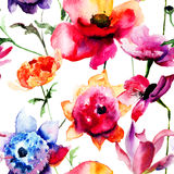 Belles fleurs de pivoine et de pavot Photographie stock libre de droits