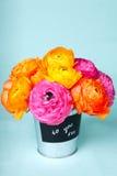 Belles fleurs de ranunculus dans un seau Photo libre de droits