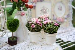 Belles fleurs de ressort Photos stock