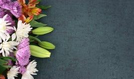 Belles fleurs de ressort au-dessus de fond de tableau noir Images libres de droits