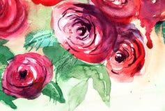 Belles fleurs de roses Image libre de droits