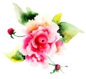 Belles fleurs de roses Images libres de droits