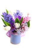 Belles fleurs de source Image libre de droits