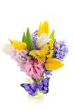 Belles fleurs de source avec des guindineaux Photo libre de droits