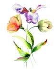 Belles fleurs de tulipes Photo libre de droits