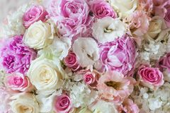 Belles fleurs E Photo stock