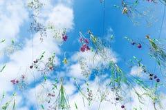 Belles fleurs et plantes sur un ciel bleu de fond avec des nuages Photographie stock libre de droits