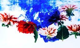 Belles fleurs faisantes de la lévitation sous l'eau photo libre de droits