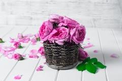 Belles fleurs fraîches de ranunculus sur le fond en bois photographie stock libre de droits