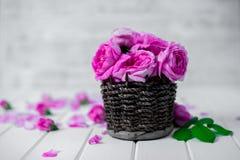 Belles fleurs fraîches de ranunculus sur le fond en bois images stock