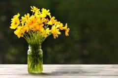 Belles fleurs jaunes dans la bouteille en verre vraiment lumineuse Images stock