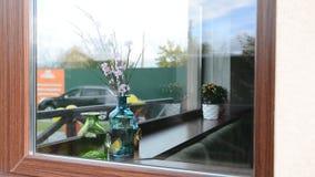 Belles fleurs lumineuses dans un vase sur la fenêtre banque de vidéos
