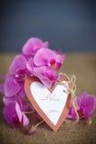Belles fleurs pourpres de phalaenopsis Image stock