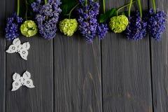 Belles fleurs pourpres et vertes sur un fond en bois gris avec l'espace pour l'inscription de salutation Vue pour la banni?re de  photographie stock libre de droits