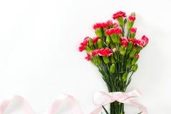 Belles fleurs roses sur le fond blanc Carte de voeux de fête Images stock