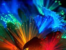 Belles fleurs rougeoyantes féeriques Image stock