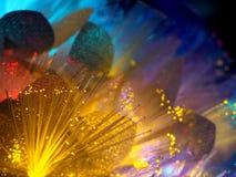 Belles fleurs rougeoyantes jaunes féeriques Photos stock