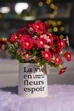 Belles fleurs rouges et roses de chrysanthème dans le vase blanc utilisé pour la décoration à la maison images stock