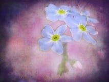 Belles fleurs sauvages illustration de vecteur