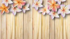 Belles fleurs sur le fond en bois de vintage photographie stock