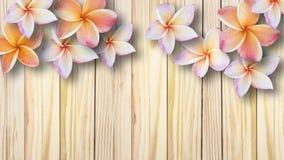 Belles fleurs sur le fond en bois de vintage Photo stock